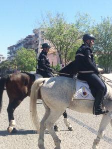 23 Nisan'a atlar da katıldı