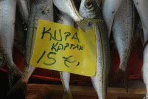 Balık 3 Aşağı 5 yukarı