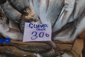 Balık Var Satış Yok